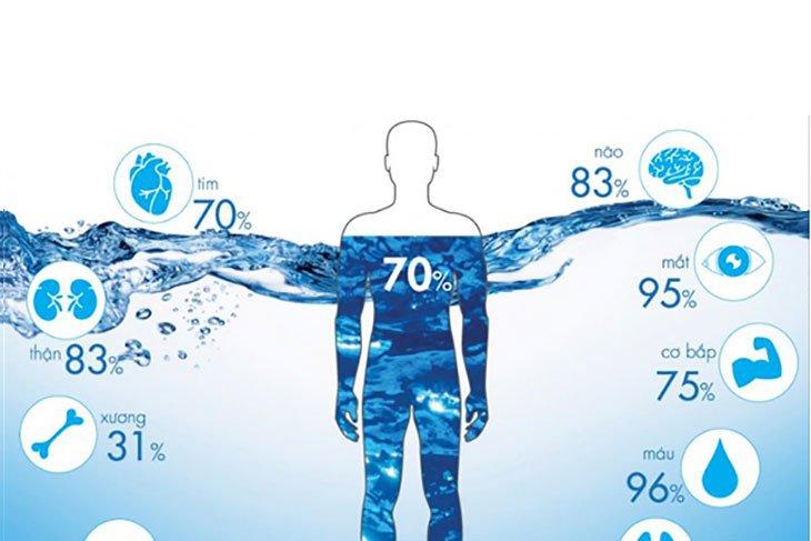 Bạn cần cung cấp đủ nước mỗi ngày cho cơ thể